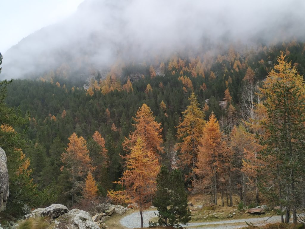 Autumn in Aosta Valley
